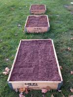 Garden Boxes Full
